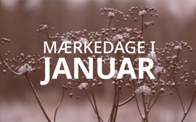 Mærkedage i januar